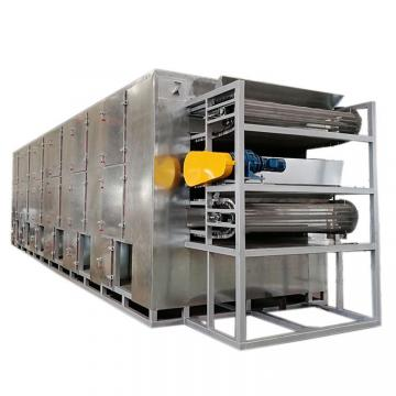 Fruit Vegetable Drying Machine Continuous Dryer