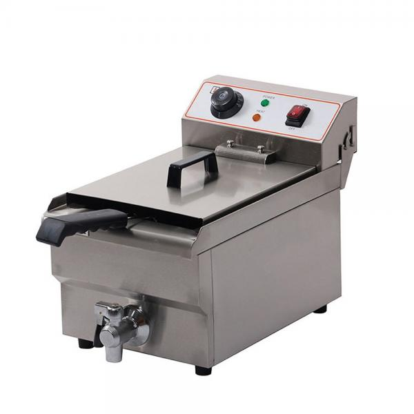 Gas Fired Continuous Belt Fryer for Snacks #1 image